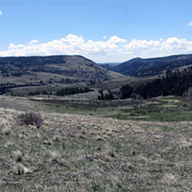 land image 2