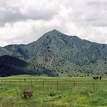 land image 3